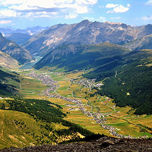 Forcola Pass and Bernina Pass