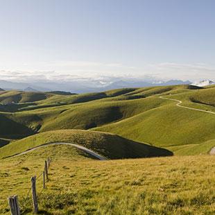 Soave hills